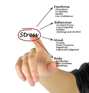Diagram van stressgevolgen - Foto van vaeenma