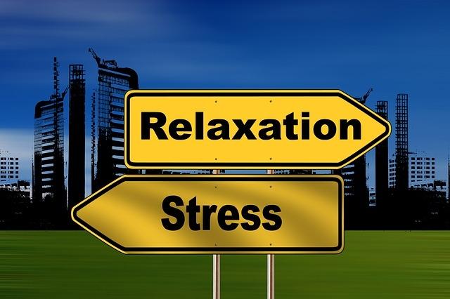 Ellen Boere counsellor coach vertrouwenspersoon Gouda blog Stress